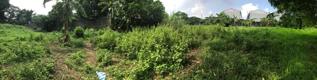 The 5,000-square meter lot before launching of Urban Agriculture Program that took 10 years to implement